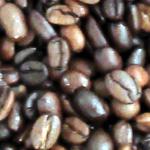 澤井珈琲Beans&Leafアイコン用